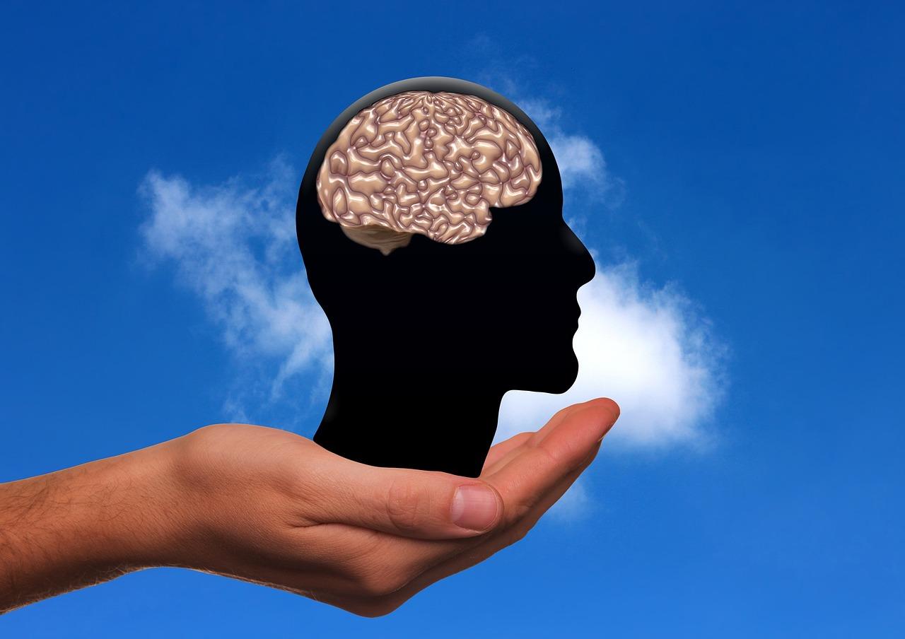 Gehirn in Kopfsilhouette, die auf einer Hand steht